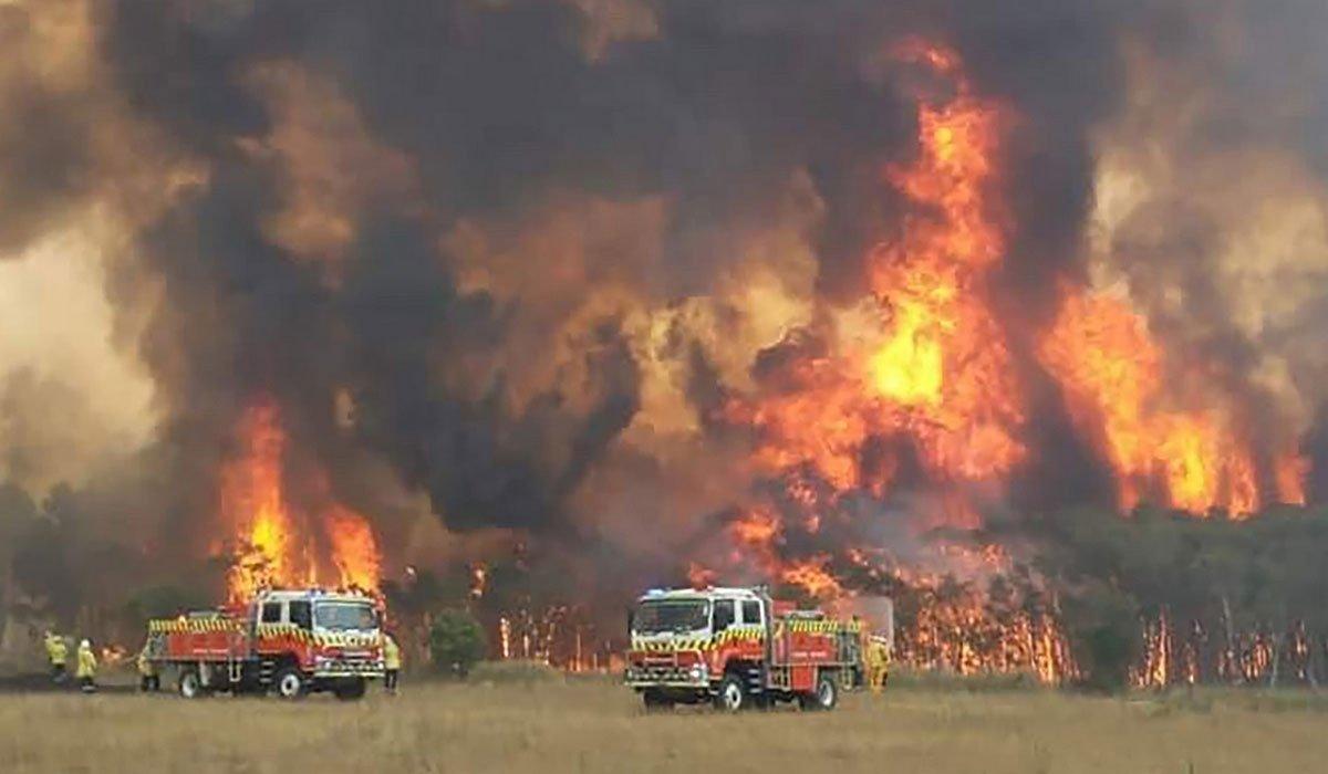 جنگلات میں لگی آگ کے باعث مختلف شہروں میں فضا بھی آلودہ ہوگئی ہے