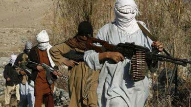 Photo of افغان حکومت نے 100 طالبان قیدیوں کو رہا کردیا