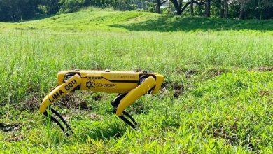 Photo of سنگاپور: پارکس میں روبوٹک کتے تعینات کرنیکا فیصلہ